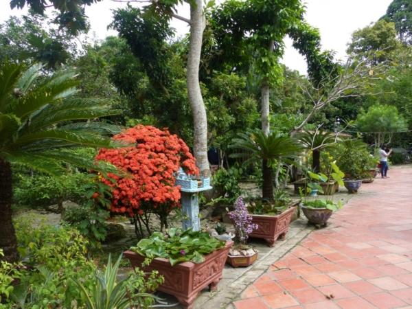 jardin d'une maison ancienne vietnamienne