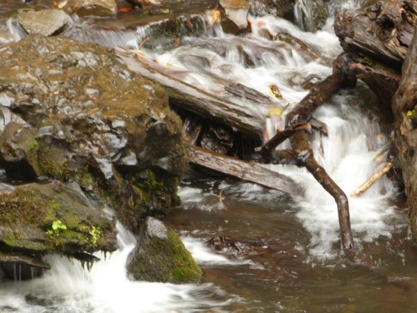 Petit ruisseau de la Bridal Veil Falls