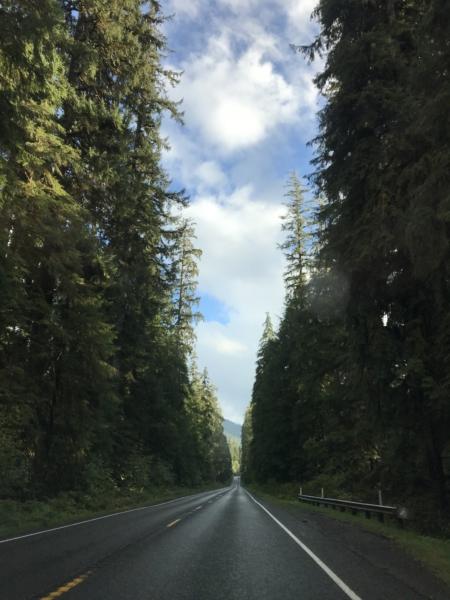Visite National Park Olympic Sur la route