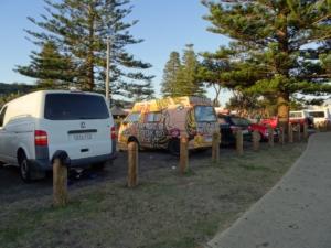 Crescent head Vans des surf